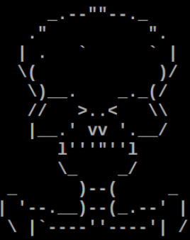 ASCII Totenkopf
